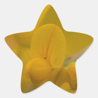 Amarillo suave pegatina en forma de estrella