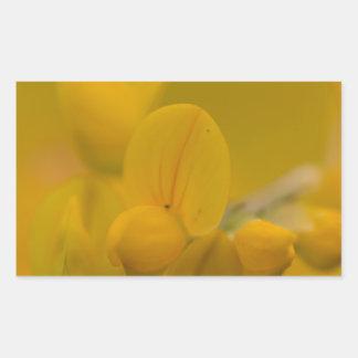 Amarillo suave pegatina rectangular