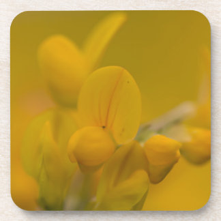 Amarillo suave posavasos de bebidas
