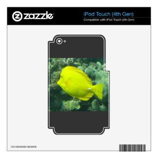 Amarillo Tang - Lau'i Pala de Hawaii iPod Touch 4G Skin
