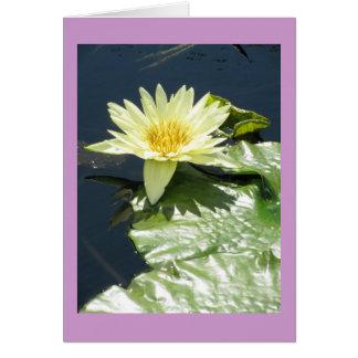Amarillo waterlily tarjeta de felicitación