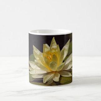 Amarillo waterlily taza clásica