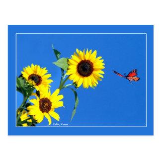 Amarillo y azul postales