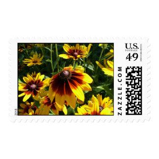 Amarillo y flores de Brown Sello