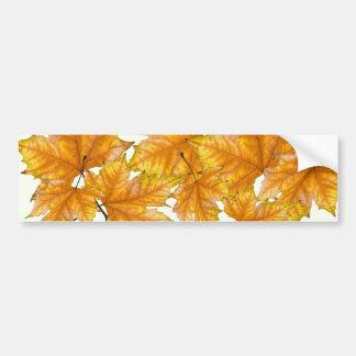 Amarillo y hojas de arce del oro pegatina para auto