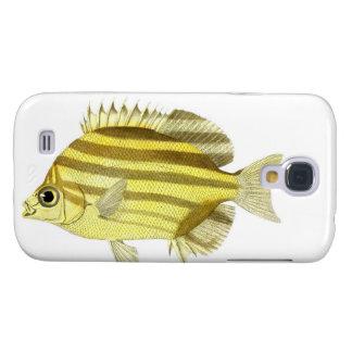 Amarillo y pescados tropicales no.3 de la raya de