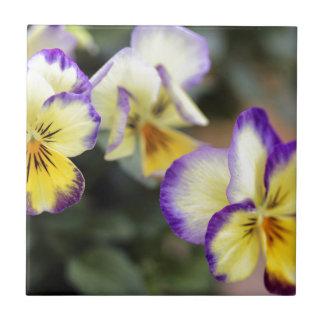 Amarillo y púrpura azulejo cuadrado pequeño