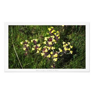 """""""Amarillos e hierba,"""" decoración floral Cojinete"""