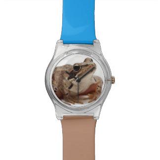 Amarre la rana - arvalis del Rana