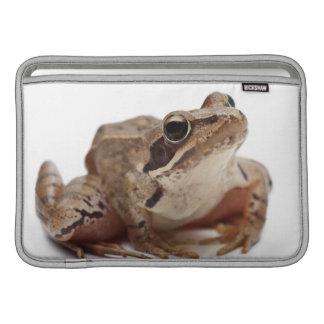 Amarre la rana - arvalis del Rana Fundas MacBook