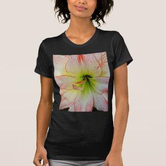 Amaryllis-021 Camiseta