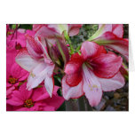 Amaryllis and Poinsettia Red Holiday Flowers Card