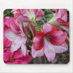 Amaryllis and Poinsettia Red Holiday Flowers Mouse Pad