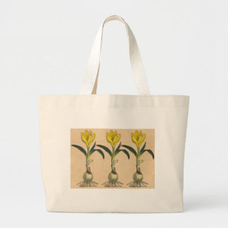 Amaryllis Botanical Vintage Garden Print three Large Tote Bag