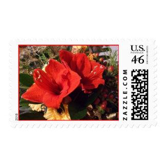 Amaryllis Bouquet Postage