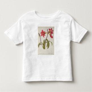 Amaryllis Brasiliensis Toddler T-shirt