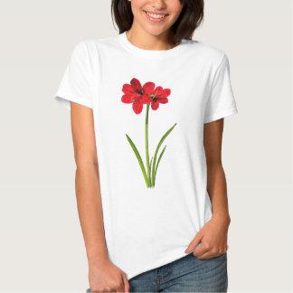 Amaryllis en rojo playera