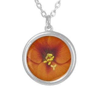 Amaryllis Flower Orange Round Pendant Necklace