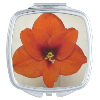 Amaryllis Flower Plant Compact Mirrors