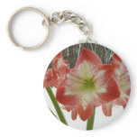 Amaryllis in Snow I Red Holiday Winter Floral Basic Round Button Keychain