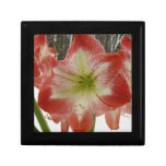 Amaryllis in Snow I Red Holiday Winter Floral Jewelry Box