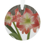 Amaryllis in Snow I Red Holiday Winter Floral Ornament