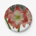 Amaryllis in Snow I Red Holiday Winter Floral Paper Plate