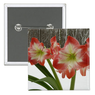 Amaryllis in Snow I Red Holiday Winter Floral Pinback Button