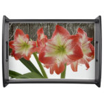 Amaryllis in Snow I Red Holiday Winter Floral Serving Tray
