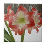 Amaryllis in Snow I Red Holiday Winter Floral Small Square Tile