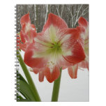 Amaryllis in Snow I Red Holiday Winter Floral Spiral Notebook