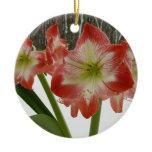 Amaryllis in Snow Ornament
