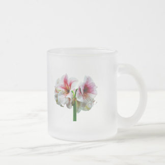 Amaryllis Novella Frosted Glass Coffee Mug