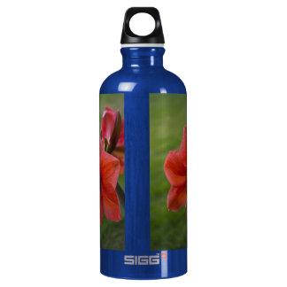 Amaryllis on Green Aluminum Water Bottle