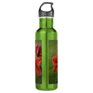 Amaryllis on Green Water Bottle