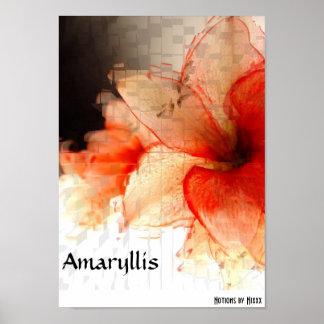 Amaryllis Impresiones