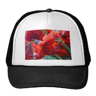 Amaryllis rojo de la flor gorros bordados