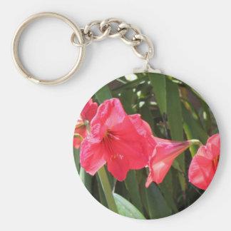 Amaryllis rojo llavero redondo tipo pin