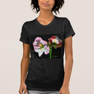Amaryllis rosado blanco de la flor camisetas
