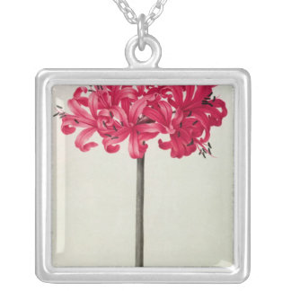 Amaryllis Sarniensis, or Narcissus Silver Plated Necklace