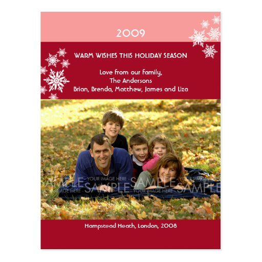 Amaryllis Snowflakes :: Christmas Photo Postcard