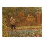 Amateur (Coachman & Cabbages) by Frederick Walker Postcards