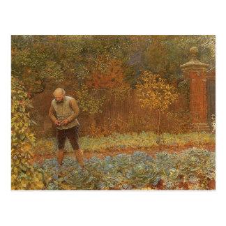 Amateur (Coachman & Cabbages) by Frederick Walker Postcard