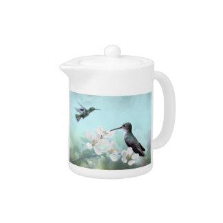 Amazilias Teapot