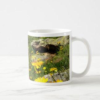 Amazing! Alpine flowers Classic White Coffee Mug