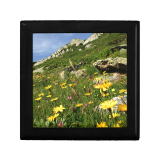 Amazing! Alpine flowers Jewelry Boxes