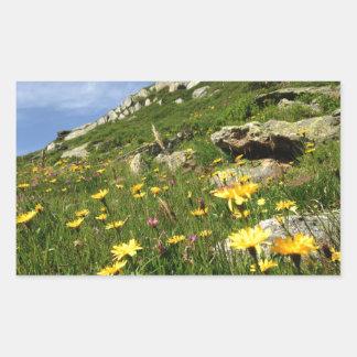 Amazing! Alpine flowers Rectangular Sticker