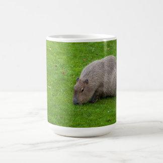 Amazing Animal Capybara Coffee Mug