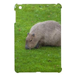 Amazing Animal Capybara Cover For The iPad Mini