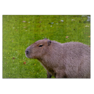 Amazing Animal Capybara Cutting Board